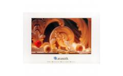 Постер Aramith CAROM 100×75см