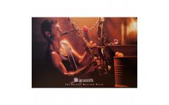 Постер Aramith SAXO 100×75см