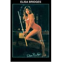 Постер ELISA BRIDGES 60×88см